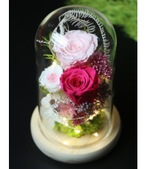 PRESERVED RED ROSE WITH LED GLASS DOME 02